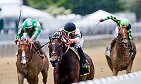 ELMONT, NY - JUNE 08: Lewis Bay, #6, ridden by Irad Ortiz, Jr., wins the Bed O' Roses Invitational Stakes during Friday racing action of the Belmont Stakes Festival at Belmont Park on June 8, 2018 in Elmont, New York. (Photo by Alex Evers/Eclipse Sportswire/Getty Images)