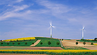 Austria, Lower Austria, Wachau, windmill, yellow Canola fields, trees