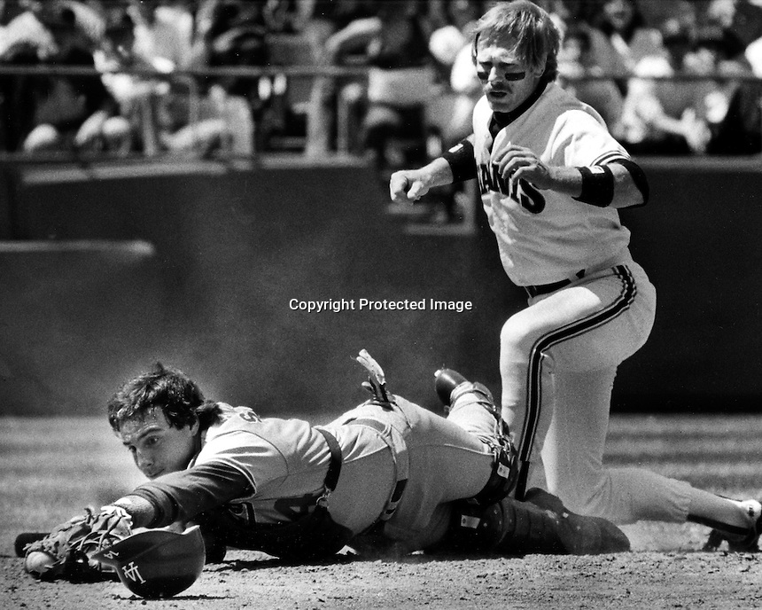 Giants Dan Gladden is safe at home after Dodger catcher Mike Scioscia has the ball jarred loose..(1985 photo by Ron Riesterer)
