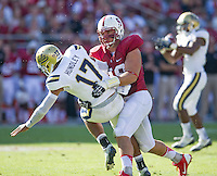 STANFORD, CA - October 19, 2013:  Stanford defensive end Ben Gardner (49) applies pressure to the quarterback during the Stanford Cardinal vs the UCLA Bruins at Stanford Stadium in Stanford, CA. Final score Stanford Cardinal 24, UCLA Bruins  10.