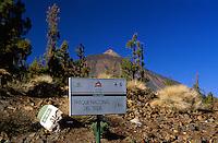 Teide Nationalpark. Teneriffa, Kanarische Inseln, Spanien Unesco-Weltkulturerbe