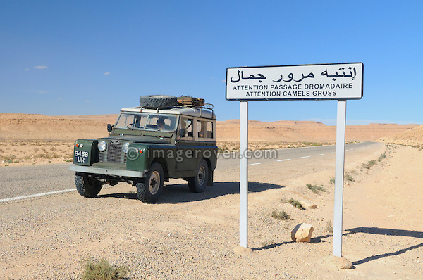 Africa, Tunisia, between Gafsa and Kebili. Signpost next to a historic 1962 Land Rover Series 2a reading Attention Camels Crossing (Attention Passage Dromadaires). --- No releases available, but releases may not be needed for certain uses. Automotive trademarks are the property of the trademark holder, authorization may be needed for some uses.  --- Info: Image belongs to a series of photographs taken on a journey to southern Tunisia in North Africa in October 2010. The trip was undertaken by 10 people driving 5 historic Series Land Rover vehicles from the 1960's and 1970's. Most of the journey's time was spent in the Sahara desert, especially in the area around Douz, Tembaine, Ksar Ghilane on the eastern edge of the Grand Erg Oriental.