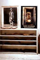 PIC_1769-MILONA ELENI HOUSE NY