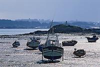 Europe/France/Bretagne/29/Finistère/Ile de Batz: Bateau échoués à marée basse