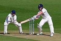 Cricket 2017-04