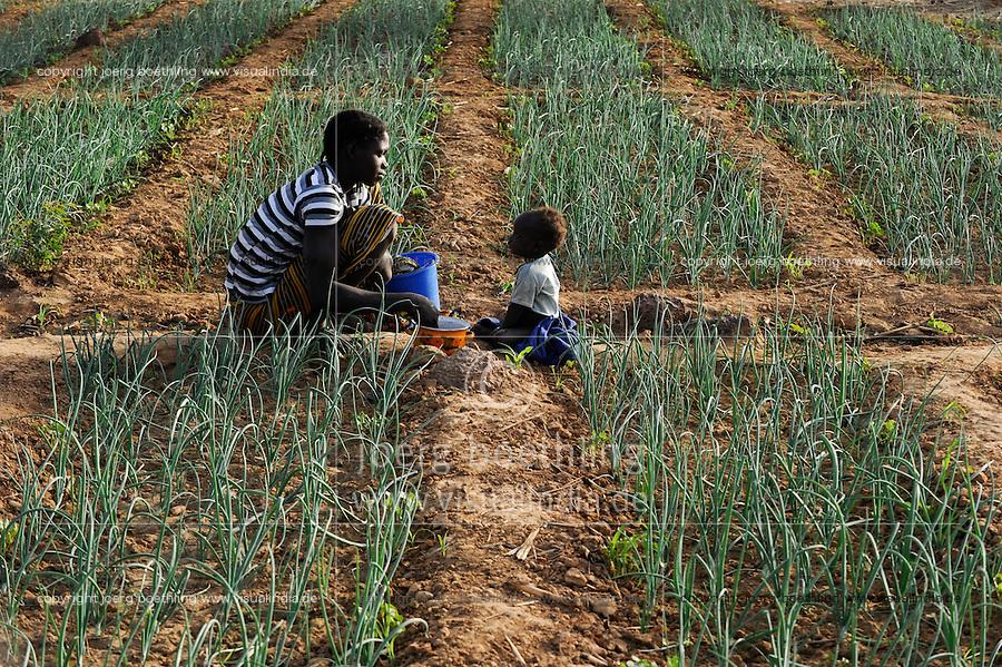 BURKINA FASO, Bokin, diocese of Kaya supports families with micro credit for cultivation of vegetables, mother feeding her child in onion field / BURKINA FASO, Bokin, Diozese Kaya unterstuetzt Menschen beim Gemueseanbau mit Kleinkrediten, Mutter mit Kind im Zwiebelfeld