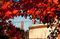Chapel with Fall Leaves and McCool<br />