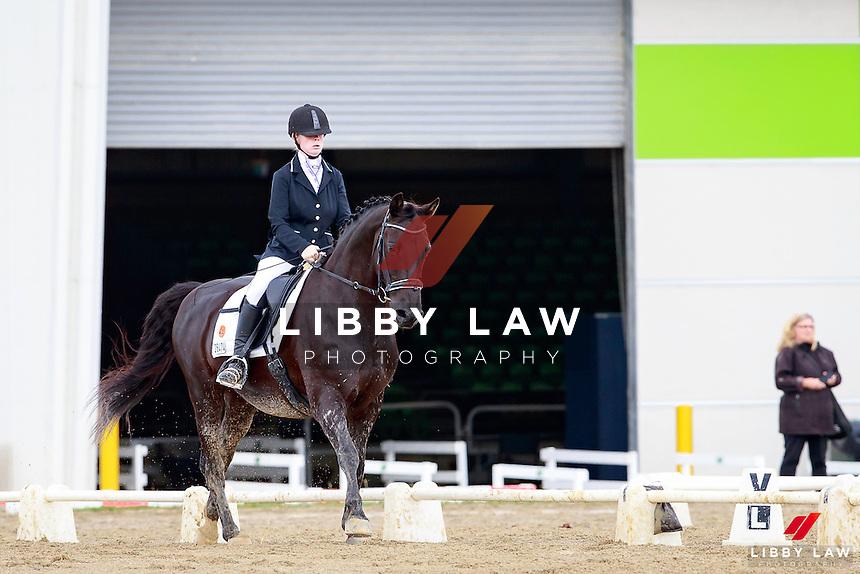 NZL-Chontelle Honour rides Tama Park Bradman. 2017 NZL-Bates NZ Dressage Championships. Manfeild Park, Feilding. Friday 3 February. Copyright Photo: Libby Law Photography