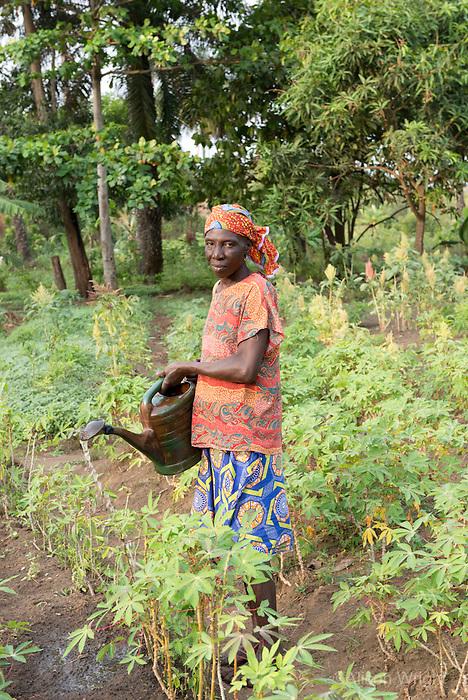 BRAC PROJECT, BRAC kitchen garden. Sallay Mansaray & Tennah Kamara working in the fields. Waterloo, Sierra Leone, Africa.