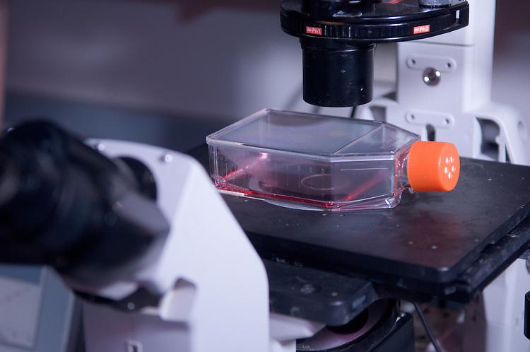 18491College of Engineering: EBI lab