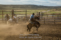 buckn Cowboys working and playing. Cowboy Cowboy Photo Cowboy, Cowboy and Cowgirl photographs of western ranches working with horses and cattle by western cowboy photographer Jess Lee. Photographing ranches big and small in Wyoming,Montana,Idaho,Oregon,Colorado,Nevada,Arizona,Utah,New Mexico.
