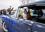 Hot Rods For Paws: Car Show, Fundraiser: December 13, 2014