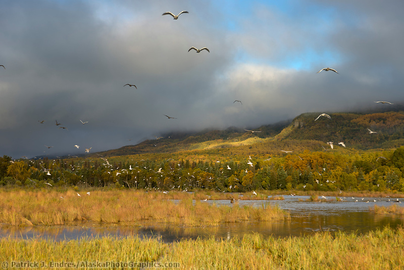Brooks river and Dumpling mountain, Katmai National Park, Alaska.
