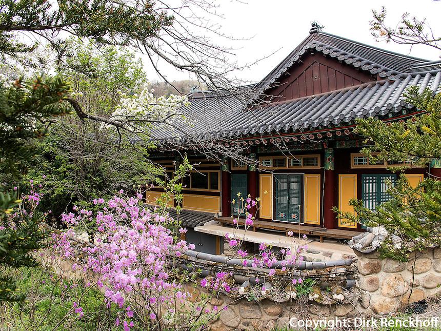 BuddhistischerTempel Woljeongsa, Provinz Gangwon-do, S&uuml;dkorea, Asien<br /> buddhist temple Woljeongsa, province Gangwon-do, South Korea, Asia
