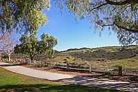 Rancho Santa Margarita Landscape