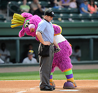 Entertainer Reggy the Purple Party Dude teases umpire Andrew Freed during a game between the Charleston RiverDogs and Greenville Drive on Sunday, April 7, 2013, at Fluor Field at the West End in Greenville, South Carolina. Charleston won, 5-0. (Tom Priddy/Four Seam Images)