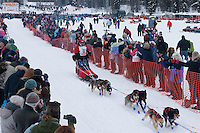 Musher # 38 Bob Hickel at the Restart of the 2009 Iditarod in Willow Alaska