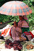 Bac Ha Market, Flower Hmong - The terms Hmong and Mong refer to an Asian ethnic group in the mountainous regions of southeast Asia. Hmong groups began a gradual southward migration due to political unrest and to find more arable land. As a result, Hmong live in several countries in Southeast Asia, including northern Vietnam, Laos, Thailand and Burma. There are various types of Hmong throughout Southeast Asia, including Black Hmong and Flower Hmong, named after the styles of their clothing and costumes.