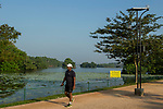 Man walking next to urban wetland, Diyawanna Lake, Colombo, Sri Lanka