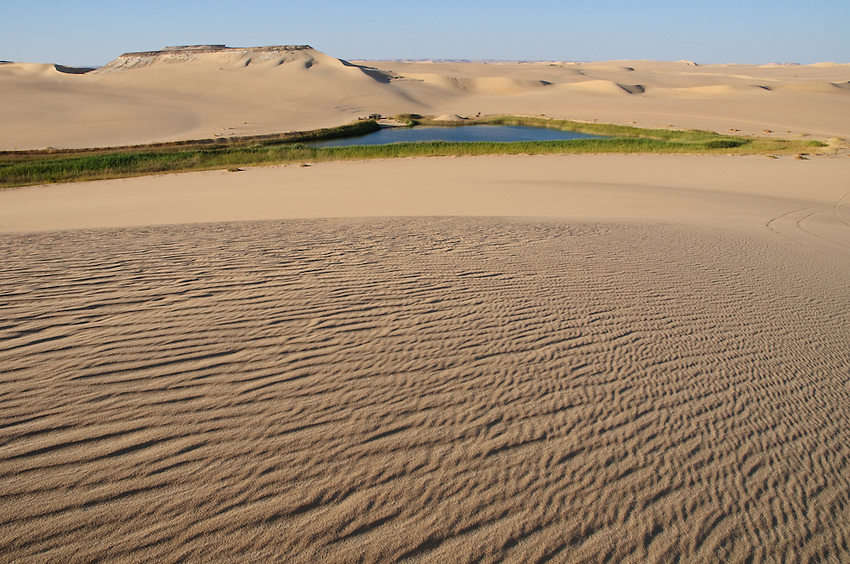Bir Wahed, a cold lake among the dunes of the Great Sand Sea