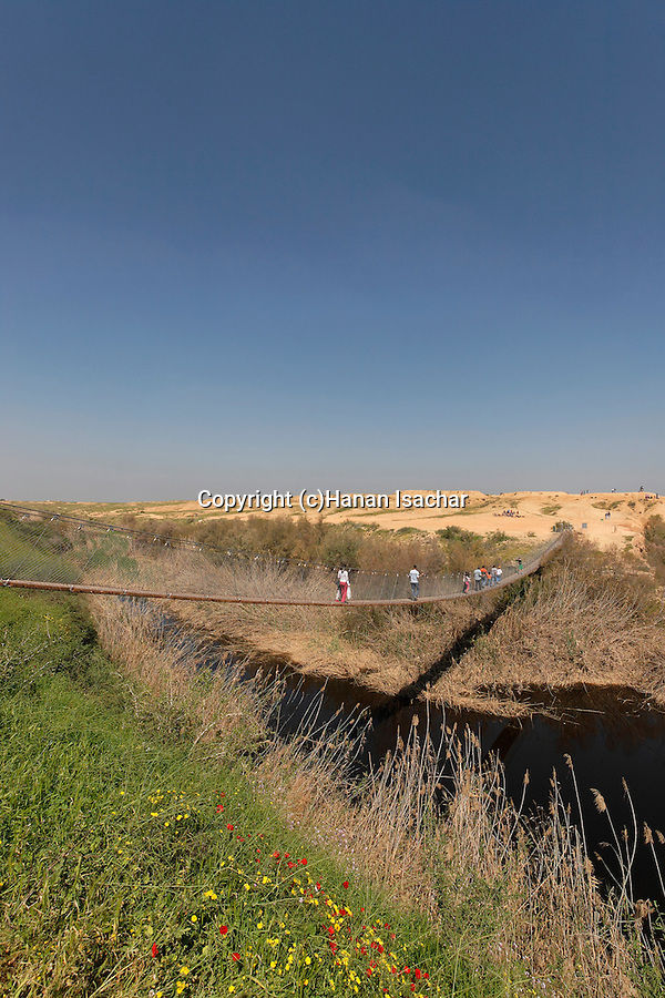 Israel, Besor region in the northern Negev. The suspension bridge over Besor stream
