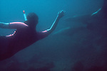 Swimming with sea lions, Baja, Mexico, Espiritu Santo,