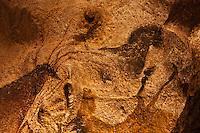 Europe/France/Aquitaine/24/Dordogne/Périgord Noir/Montignac: Grotte de Lascaux II - Grottes ornée  paléolithique - Chevaux [Non destiné à un usage publicitaire - Not intended for an advertising use]