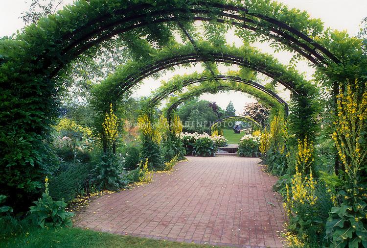 Arbor Garden