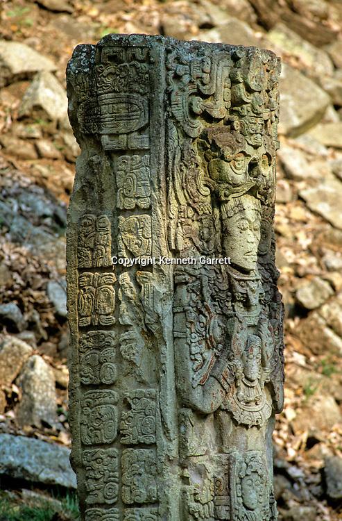 Stele D, Maya Site of Copan, Honduras