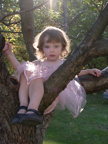 Young girl, 3-4 years old, wearing pink fancy dress sits in tree on spring morning