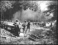 BNPS.co.uk (01202 558833)<br /> Pic:   ForestryCommision/HistoryPress/BNPS<br /> <br /> Women's Timber Corps using a mobile sawbench, 1945<br /> <br /> These inspiring photos tell the little known story of the patriotic women who chopped down trees to help us win the Second World War.<br /> <br /> When war was declared in September 1939 Britain was almost completely dependent on imported timber and only had seven months worth of it stockpiled.<br /> <br /> With men being sent to the front line in their droves, the Woman's Timber Corps was established to fell trees, operate sawmills and run forestry sites.<br /> <br /> About 15,000 women, some as young as 14, volunteered to carry out the arduous tasks previously done by men.