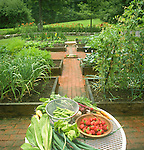Vegetables on table in garden