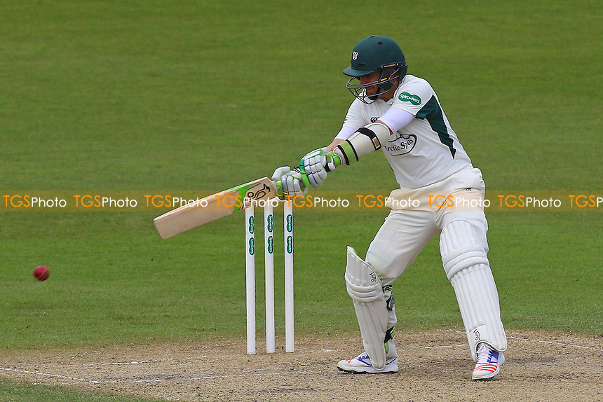 Daryl Mitchell in batting action for Worcestershire during Worcestershire CCC vs Essex CCC, Specsavers County Championship Division 2 Cricket at New Road on 3rd May 2016