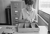 School secretary counting the dinner money, Whitworth Comprehensive School, Whitworth, Lancashire.  1970.