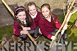 PLANTING: Planting trees at Duagh national school on Friday as part of National Tree Week, l-r: Sarah Cahill, Sophie O'Connor, Eva Kirby.