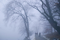 Jamaica Pond winter fog, Boston