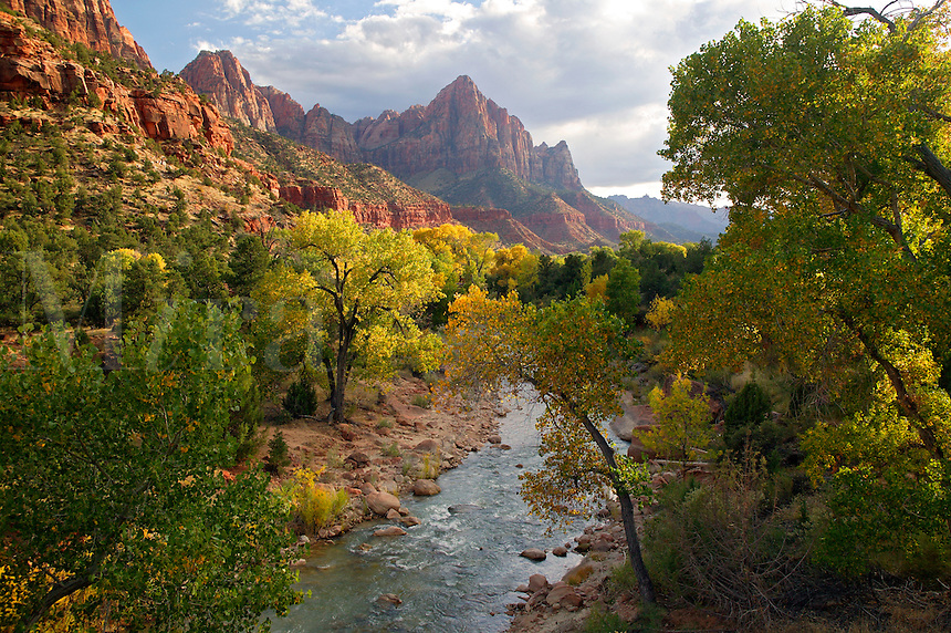 North Fork Virgin River and The Watchman, Zion National Park, Utah
