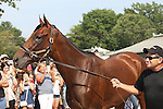 Haskell Horses 2015 at Monmouth Park