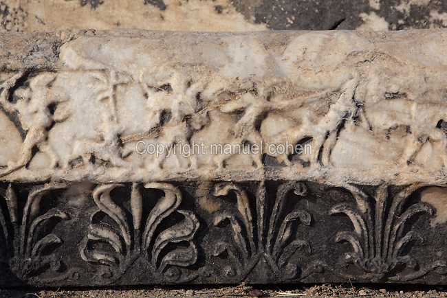 Carved frieze probably depicting a hunting scene from the Temple of Apollo, 4th century BC, Didyma, Aydin, Turkey. Didyma was an ancient Greek sanctuary on the coast of Ionia near Miletus, consisting of a temple complex and the oracle of Apollo, or Didymaion, who was visited by pilgrims from across the Greek world. The earliest temple ruins found here date to the 8th century BC but Didyma's heyday lasted throughout the Hellenistic age. It was approached along a 17km Sacred Way from Miletus and is the largest sanctuary in Western Turkey. Picture by Manuel Cohen