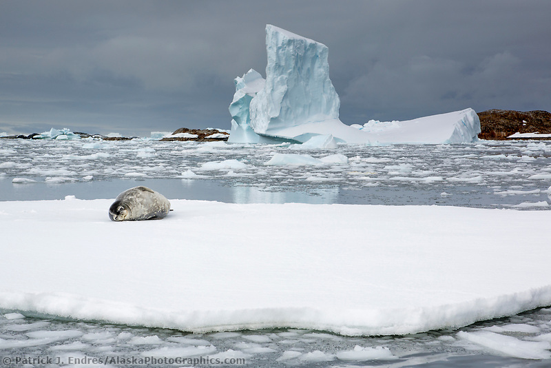 Yalour Island, Antarctica