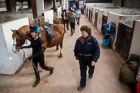 FAO Laura Lean.<br /> Friday 20 January 2017<br /> Pictured: Sue Scourfield leads the horses arena for excersise<br /> Re: Sue Scourfield's riding school is  being hit by increasing business rates.