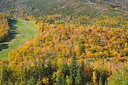Autumn foliage on Cannon Mountain Ski area from Eagle Cliff in Franconia Notch State Park of the New Hampshire White Mountains during the autumn months.