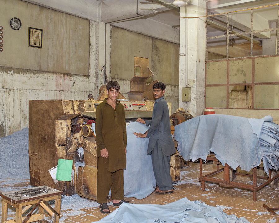 Workers handle the 'wet blue' skins as they arrive at the loading docks. Here men pass the newly arrived leather through a pressing and scraping machine that removes excess materials from the surface of the leather, and smoothens and presses it. <br /> <br /> The skins are split to the correct thickness by being put through a machine such as shown that has knife edge which can accurately split the skin in crosssection.<br /> <br /> Skins are then graded and measured. Measurement of processed skins is done using a special table that hasa computer controlled laser system which can determine the square footage of the particular skin and add the quantity to inventory.<br /> <br /> 'Wet blue' is the name given to the raw, unprocessed but prepared animal skins where chromium sulfate and other chromium salts are used. It is more supple and pliable than vegetable-tanned leather and does not discolor or lose shape as drastically in water as vegetable-tanned. It is also known as wet-blue for its color derived from the chromium. More exotic colors are possible when using chrome tanning. The chrome tanning method usually only takes a day to finish, and the ease and agility of this method make it a popular choice. It is reported that chrome-tanned leather adds up to 80% of the global leather supply.