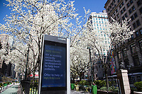NEW YORK, NY - MARCH 24: Information on the coronavirus is seen in a LinkNYC ad on March 24, 2020 in New York City. New York City, with more than 25,000 confirmed cases of (COVID-19), makes it the epicenter of the outbreak in the United States. (Photo by Pablo Monsalve / VIEWpress via Getty Images)