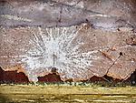 Paint splatter, ghost town of Beowawe, Nevada