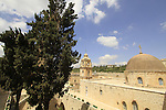 Israel, Jerusalem, Cypress trees at the Greek Orthodox Monastery of the Holy Cross