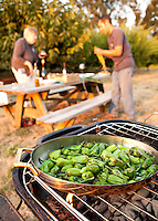 Fresh from the farm field, peppers 'Pimientos de Padrón' grilled over coals, Viridian Farms