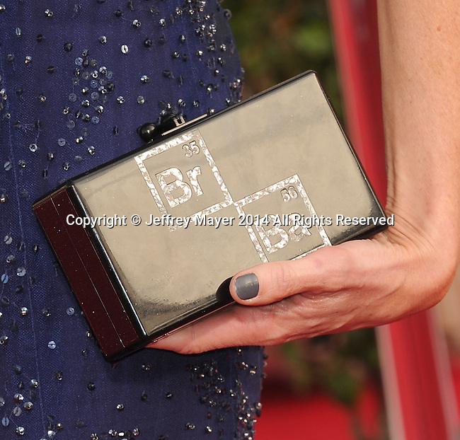LOS ANGELES, CA- JANUARY 18: Actress Anna Gunn (handbag detail) at the 20th Annual Screen Actors Guild Awards at The Shrine Auditorium on January 18, 2014 in Los Angeles, California.
