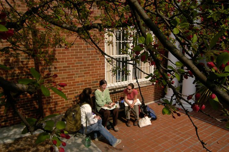 16377Spring Campus Shots 2004: Photos Johnny Hanson