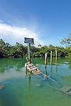 old marina docks in disrepair surrounded by mangroves in upper Keys, Florida